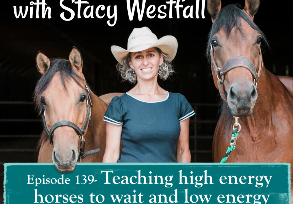 Episode 139- Teaching high energy horses to wait and low energy horses to be ready