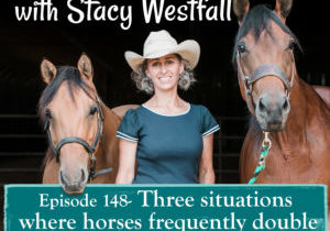 Episode 148- Three situations where horses frequently double check the rules.