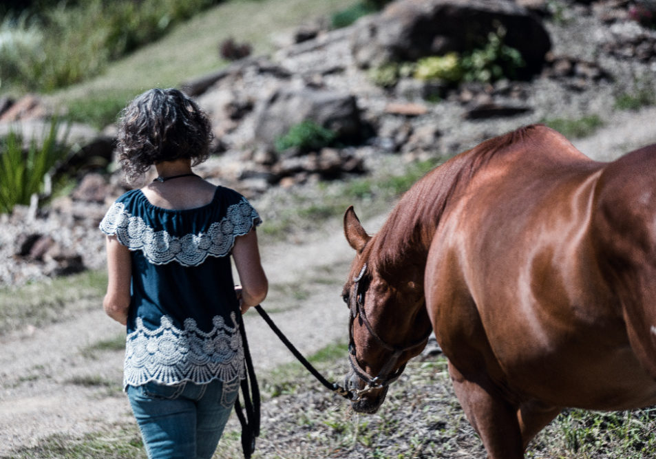 Goal setting with horses...do you have your own back