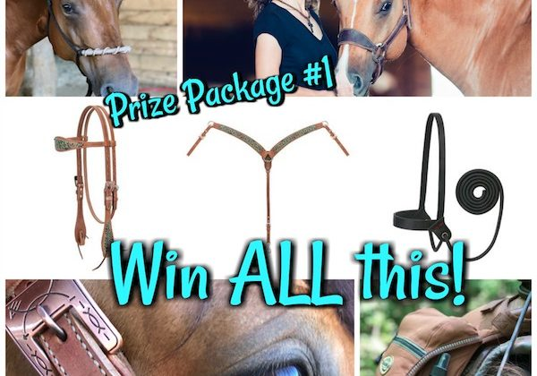 Prize Package #1-One lucky winner will get a prize package that includes: My newest headstall and breast collar set I created with Weaver Leather, leather bronc halter, quick catch halter, my favorite trail bags and a rope halter!