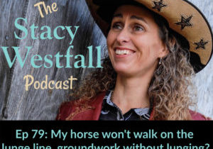 Stacy Westfall Podcast 79