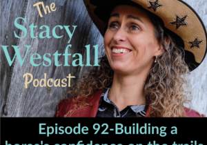 Stacy Westfall Podcast 92