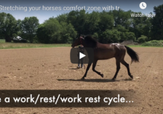 Stretching your horses comfort zone with travel