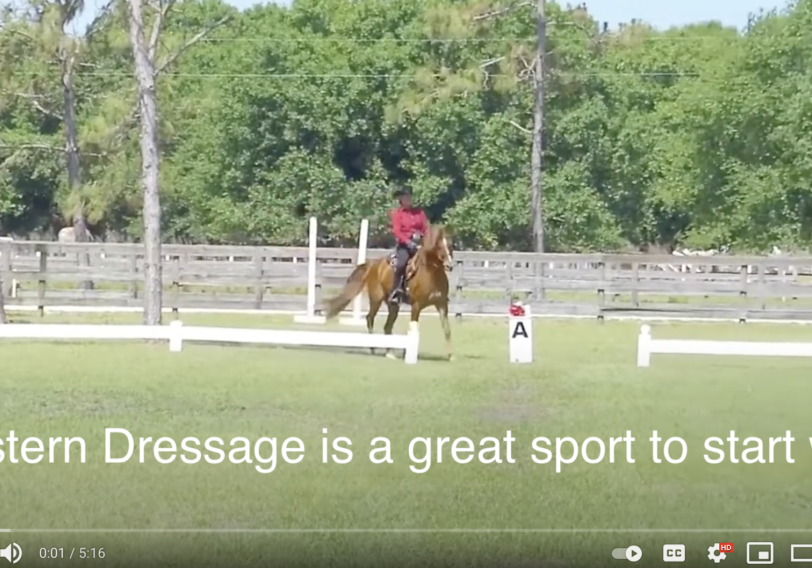 Western Dressage is a great sport to start with!